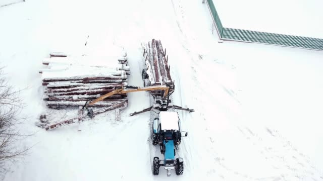 A tractor loader moves pine logs to a trailer in winter. Loading equipment for logging. Top front view. Snowing. Aerial view