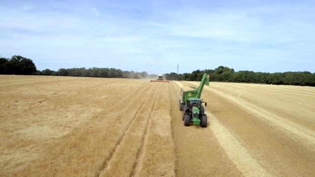 vidéos et rushes de blé de tracteur se déplaçant au cours de la récolte - équipement agricole