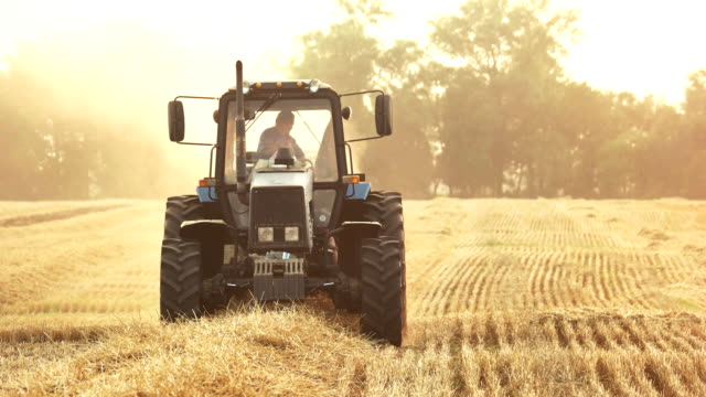 tractor on the field, close up. - trattore video stock e b–roll
