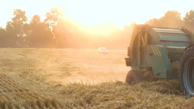 vidéos et rushes de tracteur conduisant à travers le champ de blé. - foin
