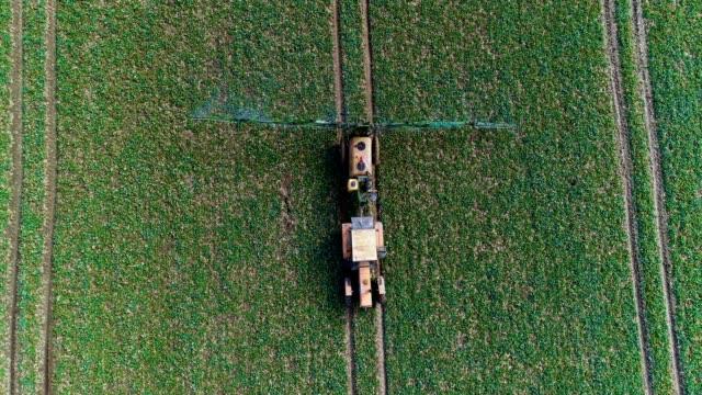vídeos de stock, filmes e b-roll de trator pulverizador fertilize em campo com produtos químicos na agricultura campo. - sem cultivo