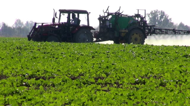 tractor sprinkler spraying  fertilizers pesticides on rapeseed field video