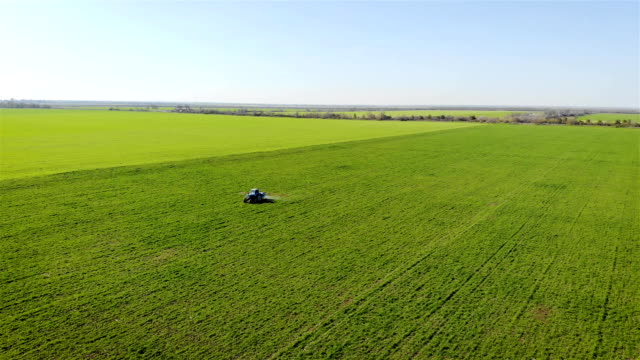 Tractor with mounted sprayer fertilizing green field of wheat and barley under blue sky