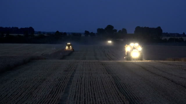 Tractor with trailer and combines with light cultivating barley rye wheat field at night. video