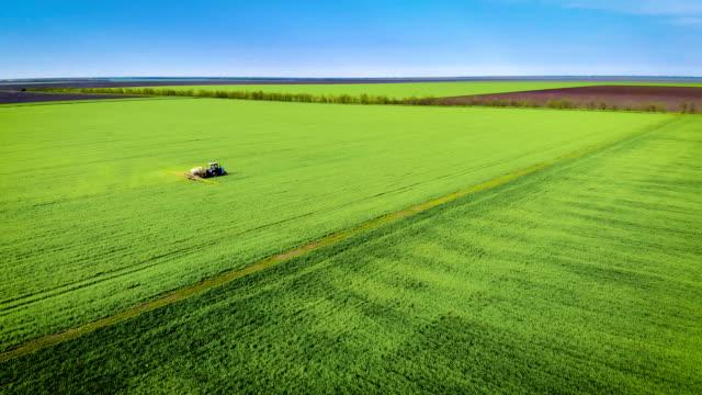 Traktor med släpvagn spruta behandlad med herbicider korn grödor på fältet video
