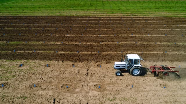 Tractor working in agricultural fields at spring video