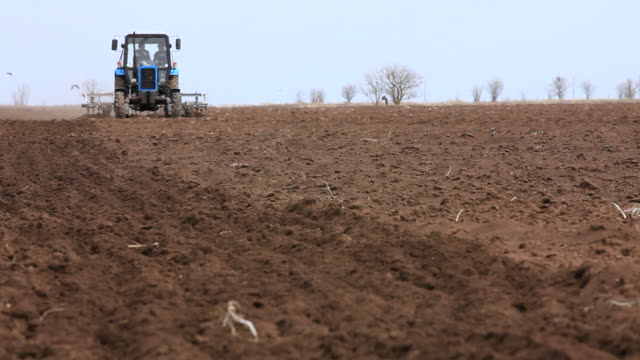 Tractor Works On Rural Field