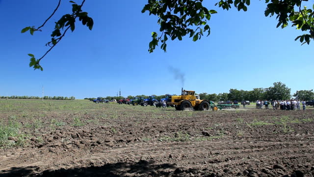 Tractors and people in the field