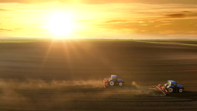 Tractors seeding at sunset