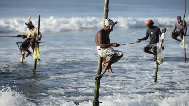 Traditional fishermen in Weligama, Sri Lanka Video shows fishing traditional fishermen in Sri Lanka. sri lanka stock videos & royalty-free footage