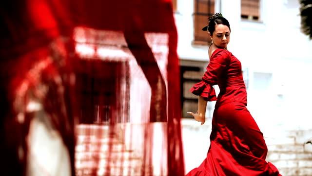 Traditional Flamenco Dancers video