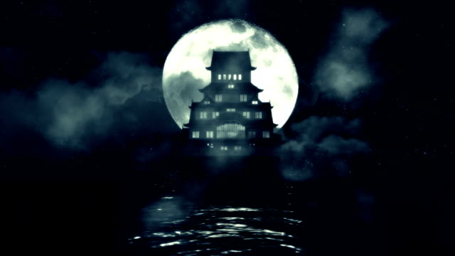 A Traditional Japanese Castle in the Middle of the Sea on a Night with Full Moon video