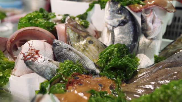 traditional mediterranean seafood market, variety of fresh fish on ice on counter. squid, crab and carp on fish bazaar, assortment of seafood, healthy eating and nutrition concept - banchi di pesci video stock e b–roll