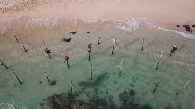 vídeos de stock e filmes b-roll de traditional stilt fishermen in sri lanka. aerial view - sri lanka