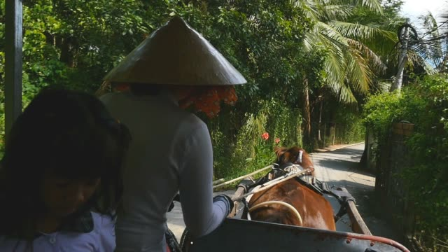MEKONG DELTA, VIETNAM - 2015: traditional Vietnamese lifestyle horse and cart video