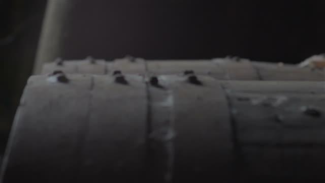 Traditional wine cellar video