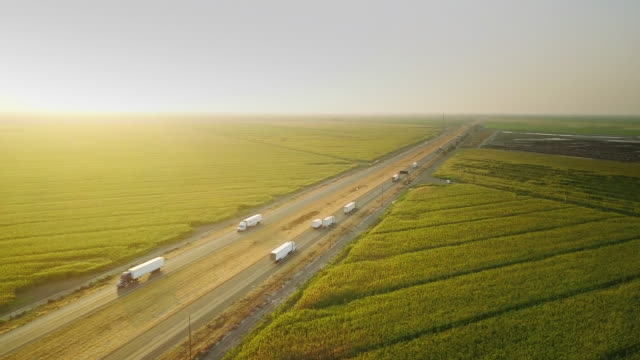 I-5 Traffic Between Cornfields and Cattle Farm - Aerial Shot Sunset drone shot of Interstate 5 cutting across farmland in the California Central Valley. about us stock videos & royalty-free footage
