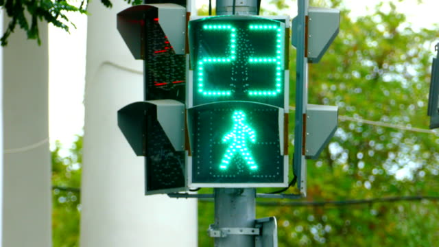 traffic light pedestrian crossing - road signs stock videos and b-roll footage