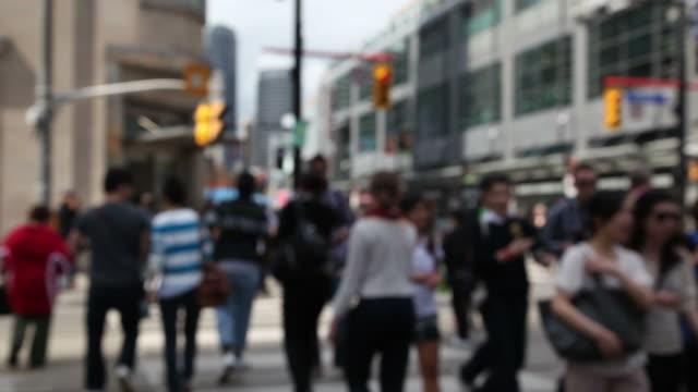 traffic light - toronto stock videos & royalty-free footage