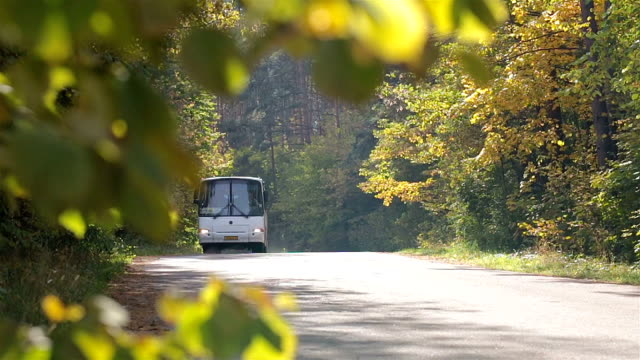 vídeos y material grabado en eventos de stock de tráfico de coches en la carretera. - autobús