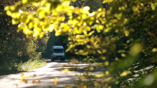 Traffic on the road in the forest. Traffic on the road in the forest. Branches with leaves in the foreground. vänskap stock videos & royalty-free footage