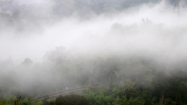 stockvideo's en b-roll-footage met verkeer op de weg door het bos in de mist - mist donker auto