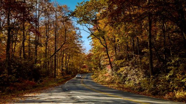 Traffic with Scenic Fall Colors in the Blue Ridge Mountains video