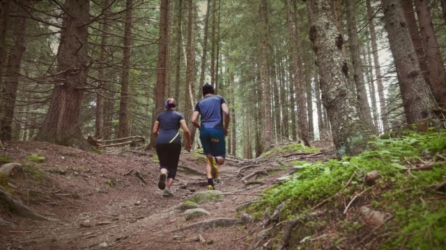 Trail running in the forest together