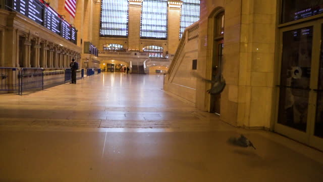 Train Station Pandemic Slow Motion Grand Central Station during the Covid lockdown times. avenue stock videos & royalty-free footage