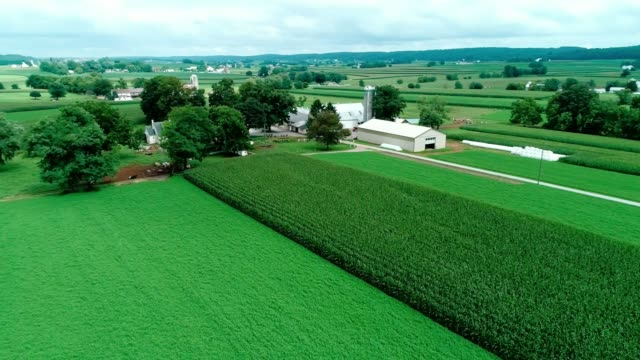 vídeos de stock e filmes b-roll de train tracks in amish countryside and farmlands as seen by drone - terra cultivada