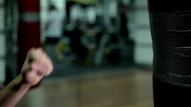 Training a boxer at the gym video