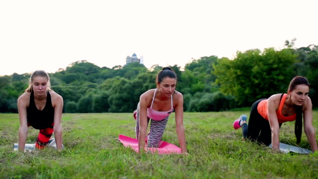 Training for perfect hips. Group of athletic young women in sportswear doing physical exercises with coach in green summer park outdoors, side view video