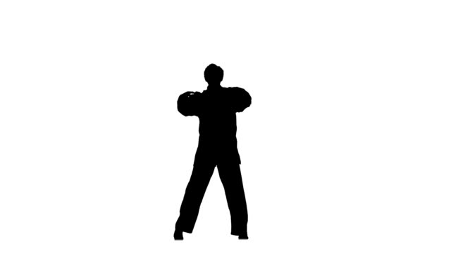 Training kung fu, karate, martial arts flips and sweeps makes rack on a white, Silhouette, hand movements video