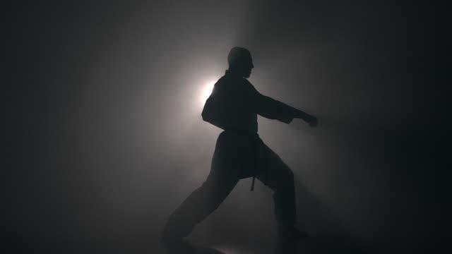 トレーニングの格闘技 ビデオ