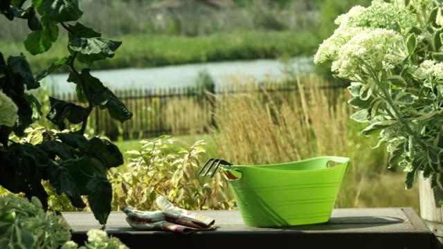 Tranquil backyard garden video