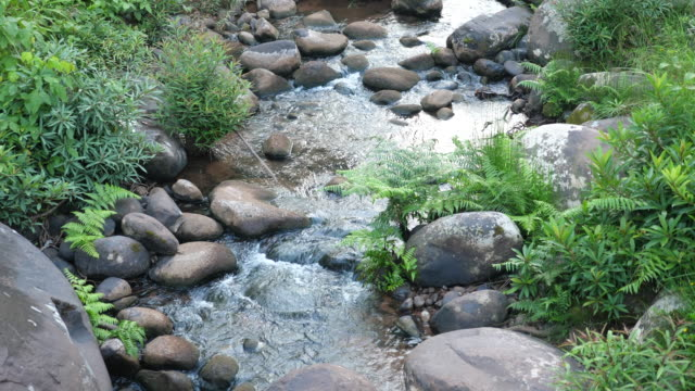 Tranquil Scene of Stream of Waterfall and Rocks