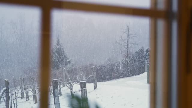 Tranquil view of snowy winter vineyard through window, super slow motion video