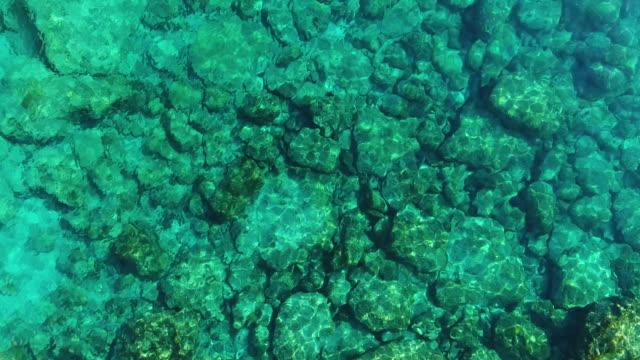 transparent waters above stones, blue lagoon, the protaras area, cyprus. aerial drone shot. - smeraldo video stock e b–roll