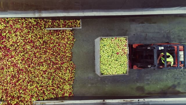 Transportation Of Box By Forklift. Aerial View.