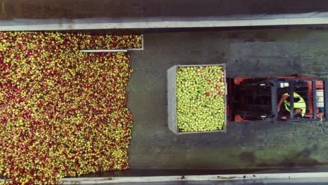 vídeos y material grabado en eventos de stock de transporte de caja por carretilla elevadora. vista aérea. - ucrania