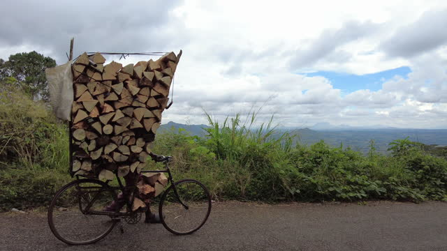Transportation of firewood stacked on a bicycle being pushed down a mountain pass