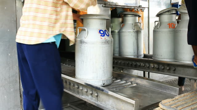 trasporta latte non pastorizzato - lattaio video stock e b–roll