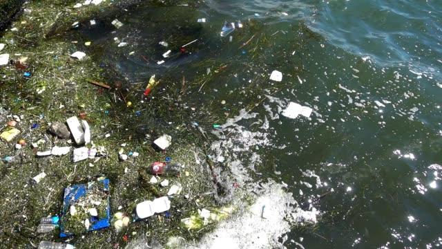 水面に浮かぶゴミやゴミ。海面に浮かぶ汚れやプラスチックゴミによる水質汚染 - 水に浮かぶ点の映像素材/bロール