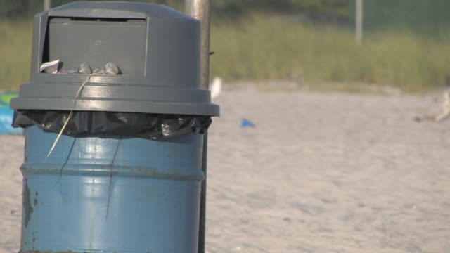 Trash can at the beach - HD 30F video