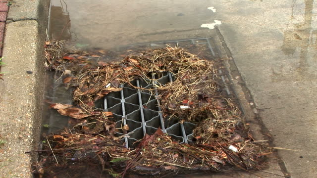 Trash in Storm Drain video