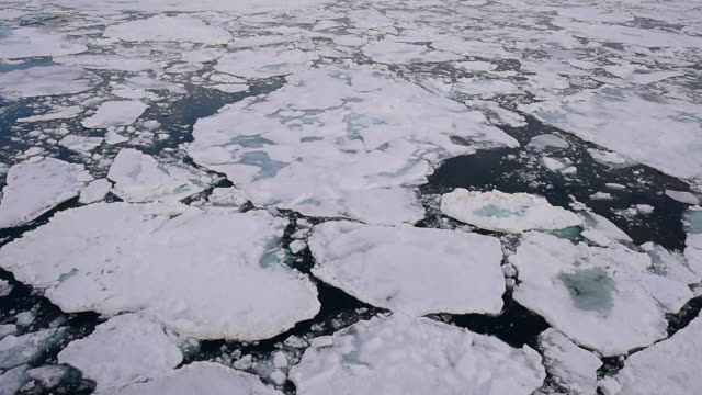 Travel In the ice , Arctic Travel on the icebreaker in the ice , Arctic polar climate stock videos & royalty-free footage