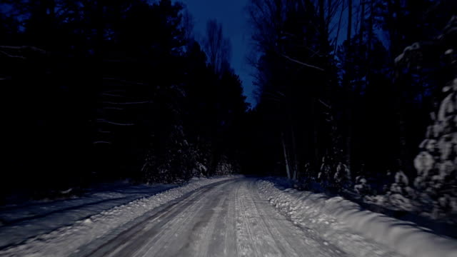 vídeos de stock e filmes b-roll de viajar através da floresta de inverno à noite estrada - passagem de ano