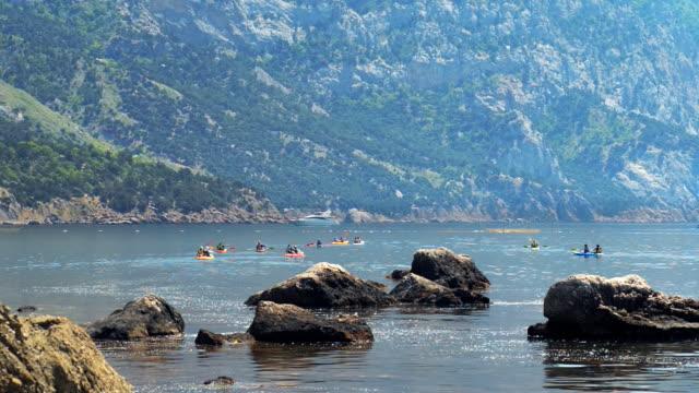 Traveler kayaking in the river video