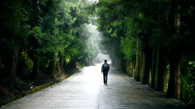 Traveler with backpack walking forward on road