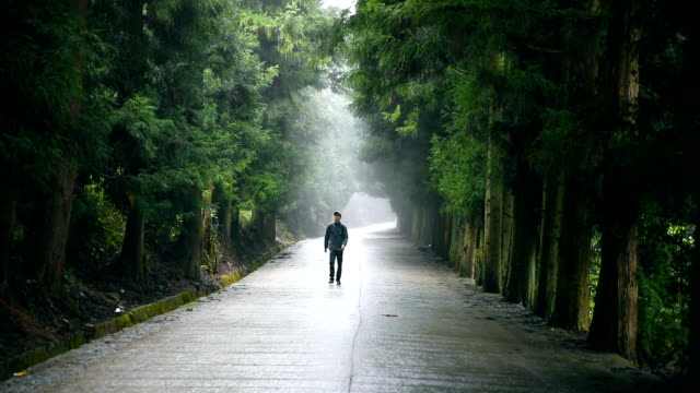 Traveler with backpack walking on road